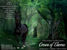 Crown of Thorns by JuneButterfly-stock