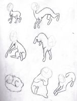 Animal Poses by 0TheWorldEndsWithMe0