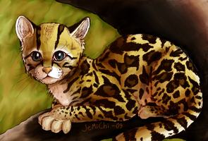 Margay by JeMiChi