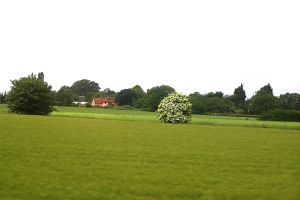English Countryside by ltdalius