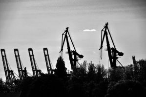 Some Cranes In The Harbour by SevenConceptions