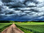 The Road by michaelmknight