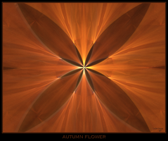 autumn flower by istarlome