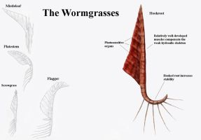 REP: The Wormgrasses by Ramul