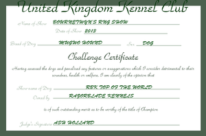 RBK Top of the World - Challenge Certificate #2 by TheChiefofTime