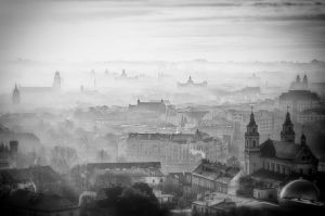 Morning Fog #4 BW by druteika