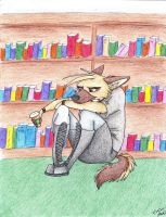 Literary Haven by Stray-Sketches
