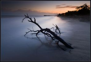 Morning Calm of La Ceiba by IgorLaptev