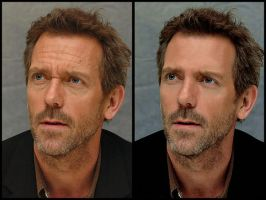 Hugh Laurie Retouch by glacial-breath