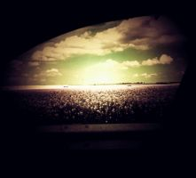 The Window Dream by illusiondevivre