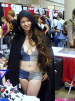 fanexpo chainmail mayhem 59 by japookins