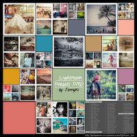 Lightroom and Camera RAW PRO presets by mutato-nomine