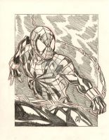 SPIDER-MAN COMMISSION by stalk