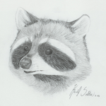 Raccoon by MagicalPoptartPoe