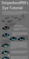Canid Eye Tutorial by Aviaku