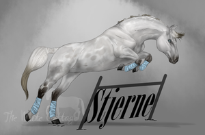 Stjerne by The-White-Cottage