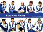 Tenimyu: Seigaku Fight by Cairy