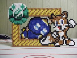 Tails photo Frame by capricornc5