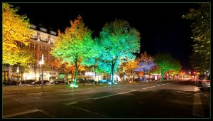 Light Festival IV by Haufschild