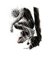 Spiderman 01 by Deinslef