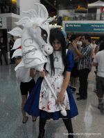 American McGee's Alice Cosplay by SuperSonicHero10