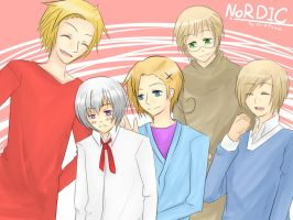 APH : Nordic FIVE by Airi-Mai