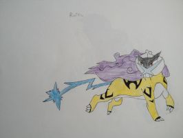Raikou by Darkshadowarts