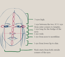Facial Structure Notes by MadRatBird