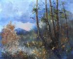 Pine trees near forest lake by flitart