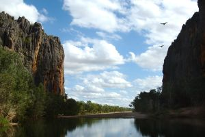 Soaring over Windjana Gorge by wildplaces