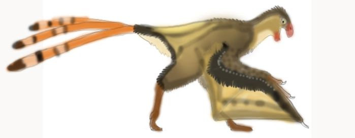 Recently Discovered Dinosaurs: the Yi qi by Taliesaurus