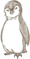 Penguin by Who-Took-My-Pie