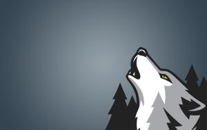 Timberwolves wallpaper by ujceq