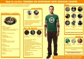 Sharing An Apartment With Sheldon Cooper.2 by pfeifhuhn