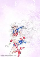 Sailor Moon  - I will not stop fighting by zelldinchit