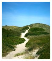 Sylt by Z740