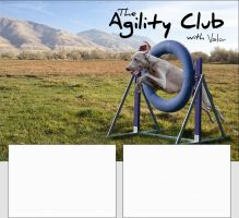 Agility Club [for Valor] by hls-mircea