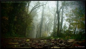 Changed Perspective by Miarath