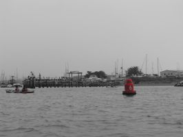 Red Buoy by Camel51