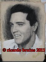elvis presley by ricardo-bruins