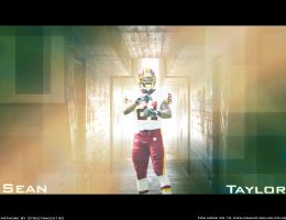 Sean Taylor Wall by streetracer150