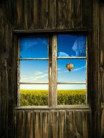 The Window by pedrosampaio