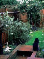 Contemplation Of The Cat by Nigel-Hirst