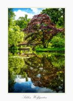 Schloss Wolfsgarten VII by calimer00