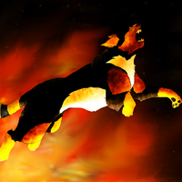 the wrath of fire:gift by 9tailsfoxyfoxy