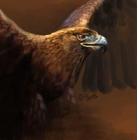 Doodle 093 Golden Eagle by giovannag
