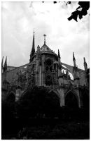 Notre Dame by edhall