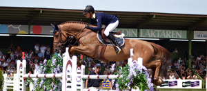 Show Jumping 37 by JullelinPhotography