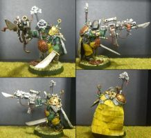 Freebooter Kaptin Badrukk by Majere613