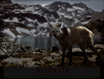 Audacity-Manned-Wolves by FamousShamus109